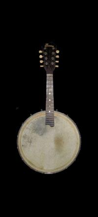 1920 Banjolin
