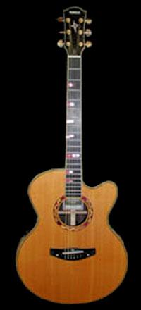 Yamaha Acoustic Electric
